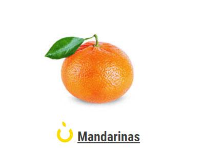 Mandarins>Sort 3 Technology